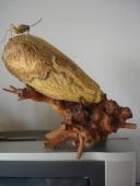 瓠子雕刻《蝈蝈白菜》