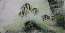 鱼(泰国虎)
